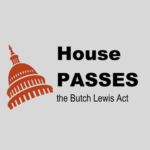 House Approves Butch Lewis Act